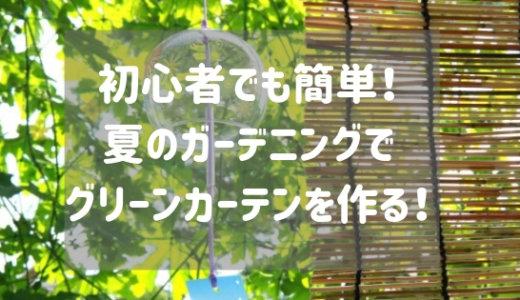 夏のガーデニング!初心者が作るグリーンカーテン!