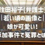 住田裕子(弁護士)若い頃の画像と娘が可愛い!草加事件で冤罪とは?