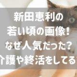 新田恵利の若い頃の画像!なぜ人気だった?介護や終活について!