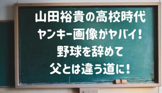 山田裕貴の高校時代がヤンキー?卒アルやバレー部画像がイケメン!
