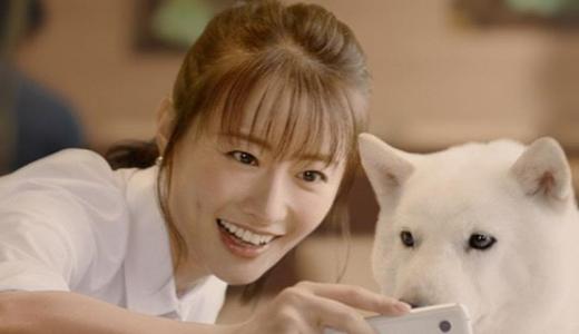 松本まりかと石原さとみの共演作や関係!ガチな親友だった!