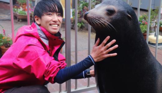 【画像20選】イケメン飼育員のラビさんが尊い!彼女はいる?桂浜水族館